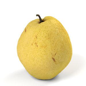 honey barrow pear 3D