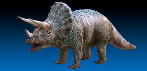 jurassic triceratops dinosaur 3D model