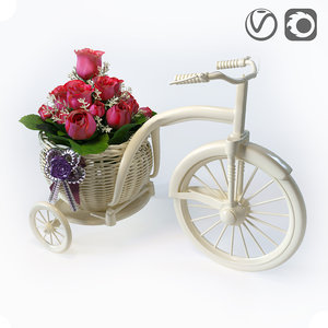 bicycle flowers model