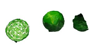 3D cabbage food vegetable