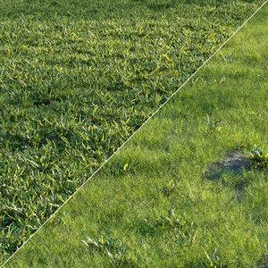 Grass set 01