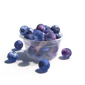 blueberry berry 3D model