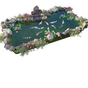 koi fish water waterfall 3D model