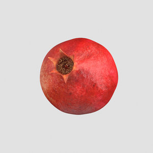pomegranate fruit food 3D