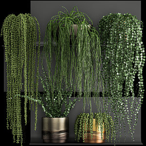 vertical gardening wall shelves 3D model