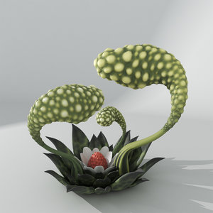 alien plant codex seraphinianus 3D model