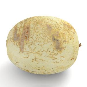 3D honeydew sunlady melon model