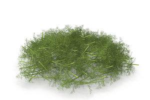 3D sprout salad vegetable model