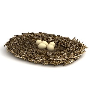 3D model bird nest eggs