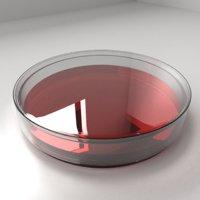 Glass Petri Dish with Agar