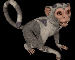 monkey animal 3D