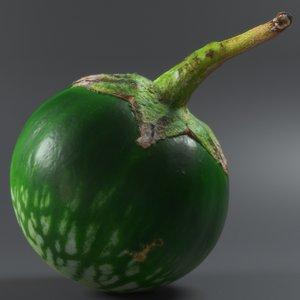 thai eggplant 3D model