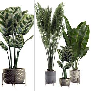 potted plants set 2 3D model