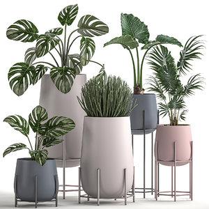 decorative plants pots interior 3D model