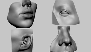 printable lip nose eye 3D
