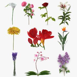 3D flowers 10 model