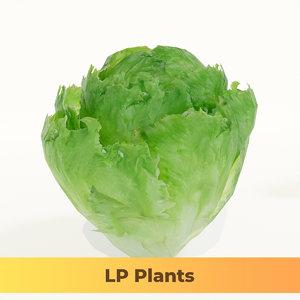 lettuce 3D model