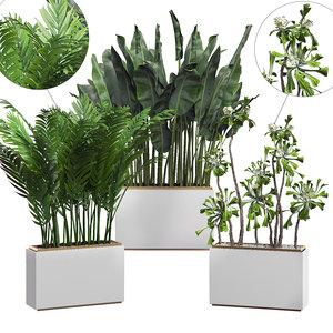 3D potted plants set 13 model