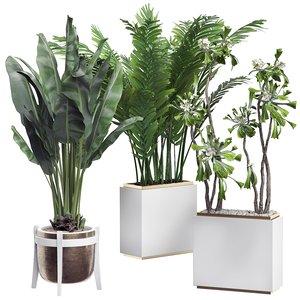 3D potted plants set 14