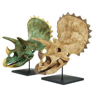 triceratops skull 3D model