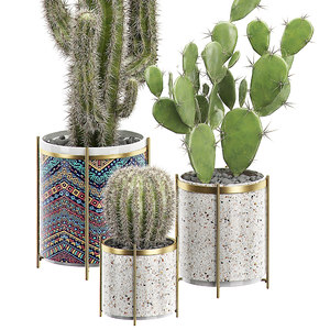 3D model potted plants set 18
