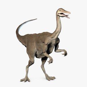 3D struthiomimus dinosaur