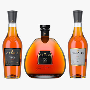 camus cognac bottles vs model