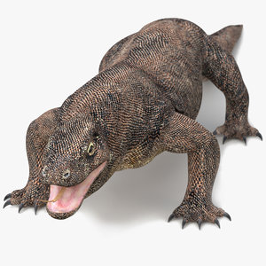 3D komodo dragon
