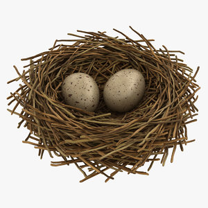 realistic bird nest 02 model