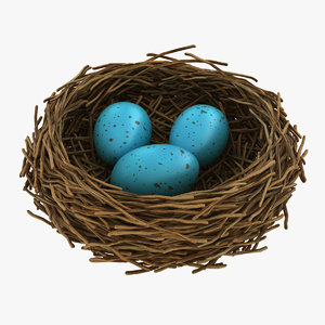 realistic bird nest 03 3D model