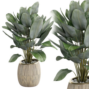 potted plant 22 model