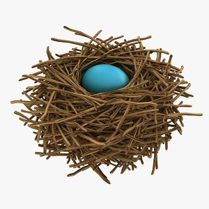 realistic bird nest 04 3D model
