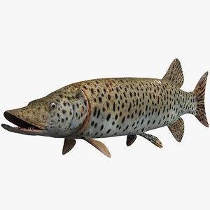 fish animal model