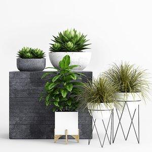 plants planter 3D