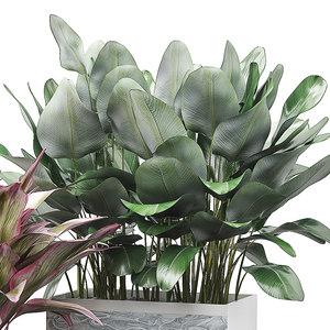 3D model potted plants set 30