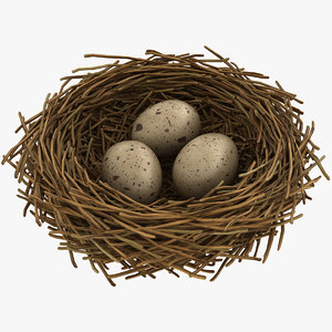 realistic bird nest 05 3D model