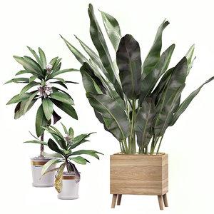 potted plants set 31 model