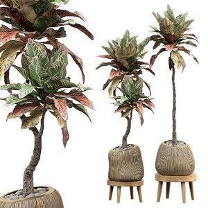 3D potted plants set 33
