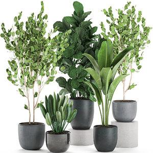 3D decorative plants pots interior model