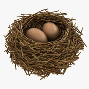 3D realistic bird nest 06