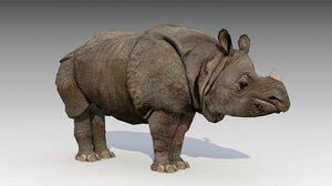 asian rhinoceros animations rhino 3d max