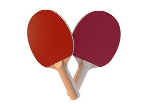 3D table tennis paddle