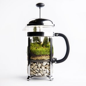 florarium french press 3D model
