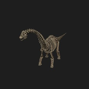 rigged sauropod skeleton model