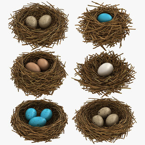realistic bird nest 3D model