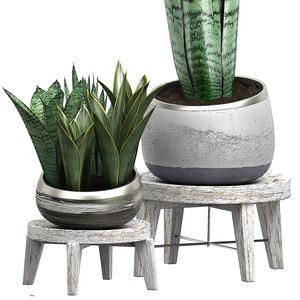 potted plants set 41 3D model