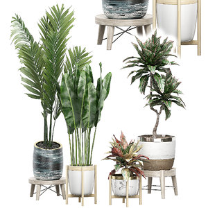 3D potted plants set 42