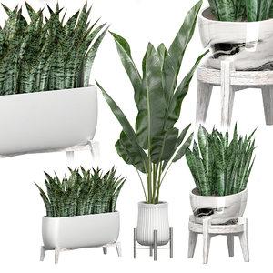 potted plants set 45 3D