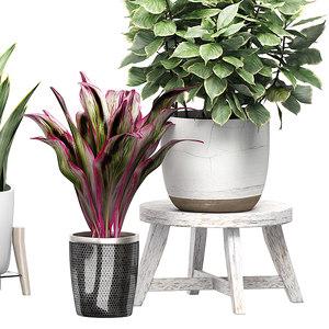 potted plants set 46 3D model