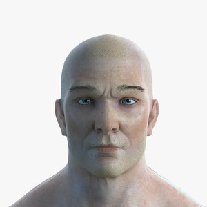 3D realistic male body character